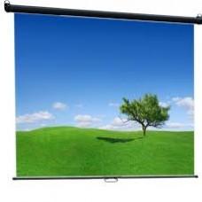 Экран настенный Classic Scutum 220x220 (W 220x220/1 MW-SS/T)